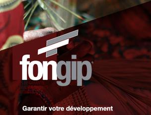 FONGIP ou le Fonds de Garantie des Investissements Prioritaires